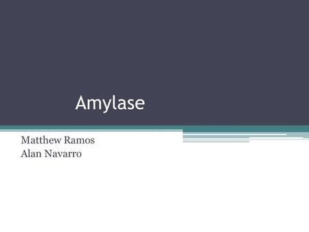 Amylase Matthew Ramos Alan Navarro. What is an Enzyme? Enzymes are a type of protein made when the DNA of a cell is transcribed into RNA and amino acids.
