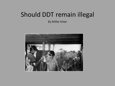 Should DDT remain illegal By Millie Hiner. What is DDT and what was it used for DDT is pesticide that was used all over the world in the 1900s to put.