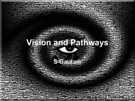 Vision and Pathways S Gautam. Vision Pathways.
