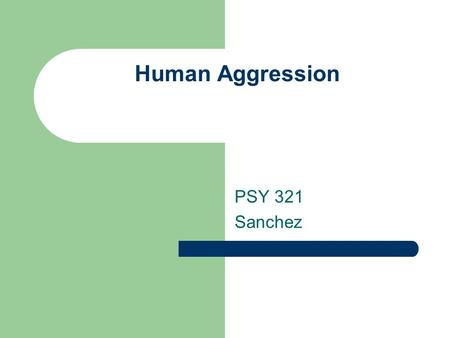 Human Aggression PSY 321 Sanchez.