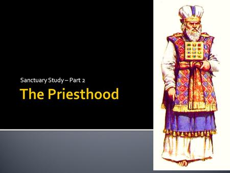 Sanctuary Study – Part 2 The Priesthood.