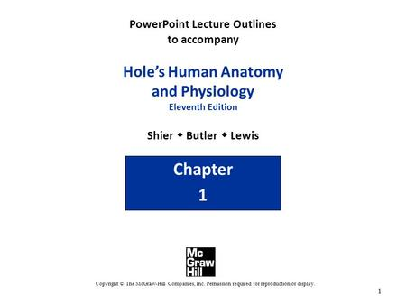 PowerPoint Lecture Outlines to accompany Hole's Human Anatomy and Physiology Eleventh Edition Shier w Butler w Lewis Chapter 1 Copyright © The McGraw-Hill.
