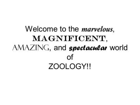 Welcome to the marvelous, magnificent, amazing, and spectacular world of ZOOLOGY!!