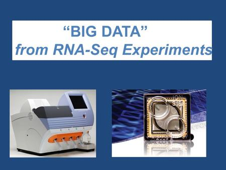 """BIG DATA"" from RNA-Seq Experiments. Significance of RNA-Seq Approaches  Reveals which genes are expressed and the levels at which they are expressed;"