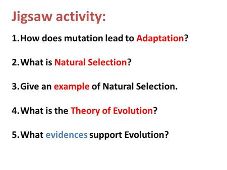 Jigsaw activity: How does mutation lead to Adaptation?