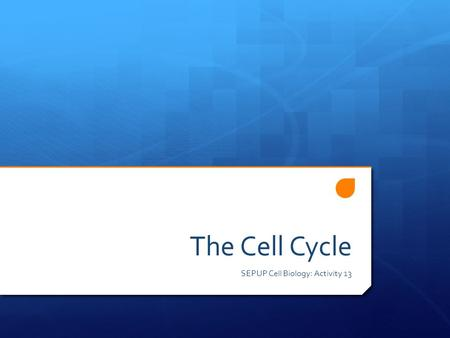 The Cell Cycle SEPUP Cell Biology: Activity 13  What do cells need energy for? Brainstorming!!  Transport/movement  Obtain food/energy  Produce building.
