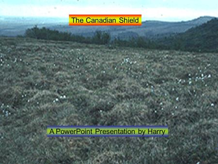 The Canadian Shield A PowerPoint Presentation by Harry.
