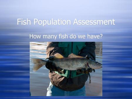 Fish Population Assessment How many fish do we have?