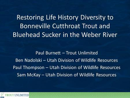 Restoring Life History Diversity to Bonneville Cutthroat Trout and Bluehead Sucker in the Weber River Paul Burnett – Trout Unlimited Ben Nadolski – Utah.