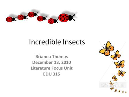 Incredible Insects Brianna Thomas December 13, 2010 Literature Focus Unit EDU 315.