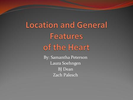 Location and General Features of the Heart
