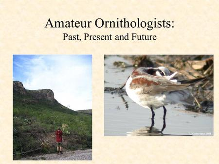 Amateur Ornithologists: Past, Present and Future.