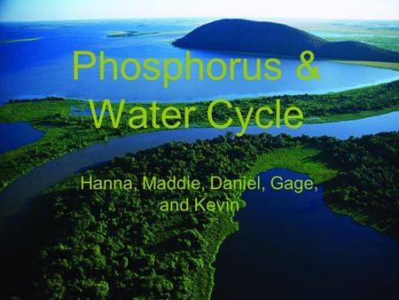 Phosphorus & Water Cycle Hanna, Maddie, Daniel, Gage, and Kevin.