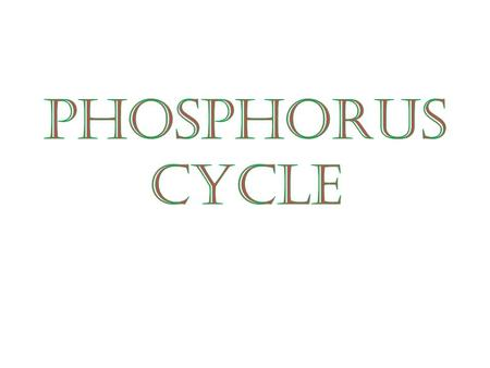 The global circulation of phosphorus from the environment to living organisms and back to the environment  KkC2JpjaGc&feature=related.