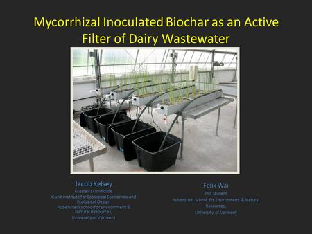 Mycorrhizal Inoculated Biochar as an Active Filter of Dairy Wastewater Jacob Kelsey Master's candidate Gund Institute for Ecological Economics and Ecological.