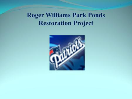 Roger Williams Park Ponds Restoration Project. Project Update Concept Plans Developed for Structural and Non- Structural Best Management Practices Draft.