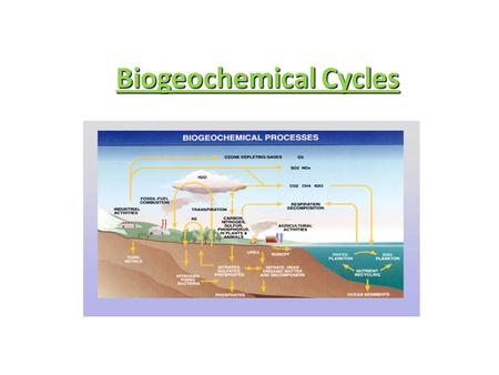 Biogeochemical Cycles. o Energy Flows Through Ecosystem o Water—Nitrogen—Carbon—Phosphorus Are Recycled ! o They Move Thru A Biogeochemical Cycle : o.