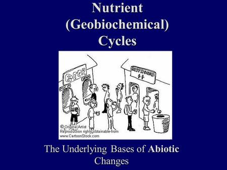 Nutrient (Geobiochemical) Cycles The Underlying Bases of Abiotic Changes.