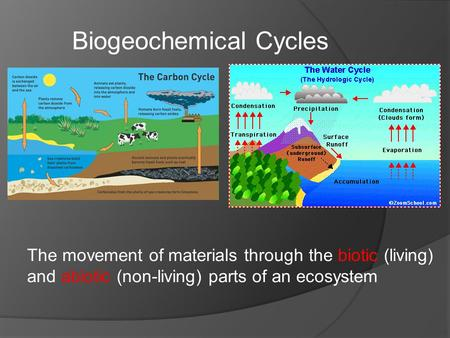 The movement of materials through the biotic (living) and abiotic (non-living) parts of an ecosystem Biogeochemical Cycles.
