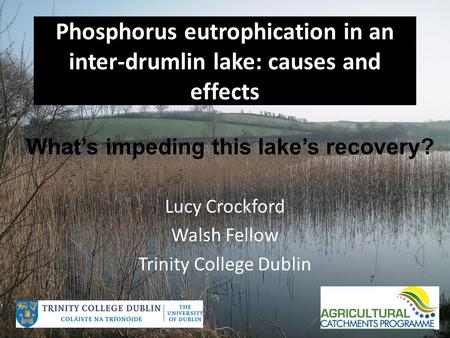 Phosphorus eutrophication in an inter-drumlin lake: causes and effects Lucy Crockford Walsh Fellow Trinity College Dublin What's impeding this lake's recovery?