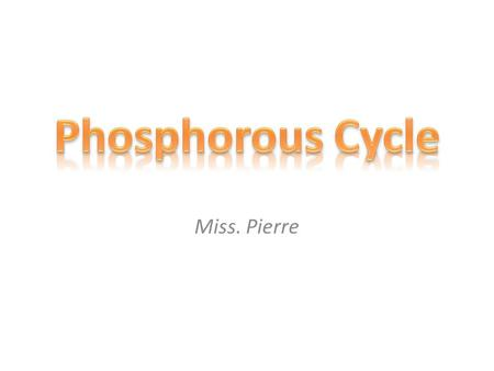 Miss. Pierre. Phosphorus is an essential nutrient for plants and animals in the form of ions PO 4 3- and HPO 4 2-. It is a part of DNA and RNA molecules,