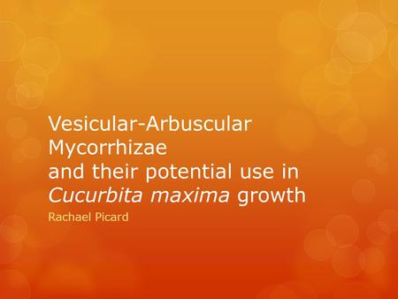 Vesicular-Arbuscular Mycorrhizae and their potential use in Cucurbita maxima growth Rachael Picard.