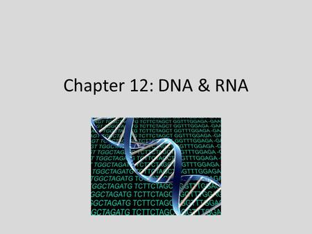 Chapter 12: DNA & RNA. Section 12.1 – Structure of DNA DNA – Deoxyribonucleic Acid; traits are determined by your genes, genes code for proteins, and.