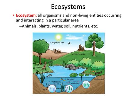Ecosystems Ecosystem: all organisms and non-living entities occurring and interacting in a particular area Animals, plants, water, soil, nutrients, etc.
