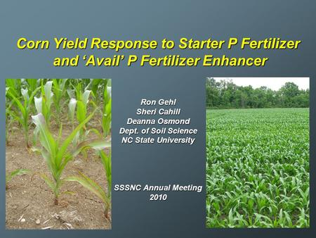 Corn Yield Response to Starter P Fertilizer and 'Avail' P Fertilizer Enhancer Ron Gehl Sheri Cahill Deanna Osmond Dept. of Soil Science NC State University.