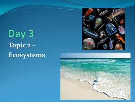 Day 3 Topic 2 – Ecosystems.