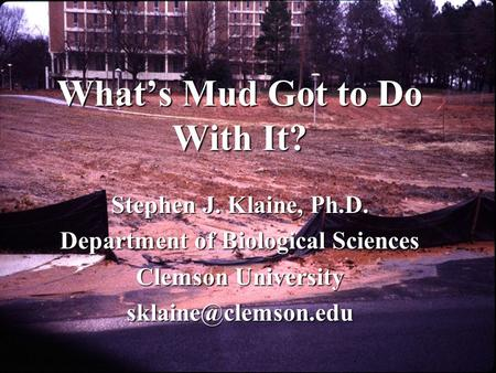 What's Mud Got to Do With It? Stephen J. Klaine, Ph.D. Department of Biological Sciences Clemson University