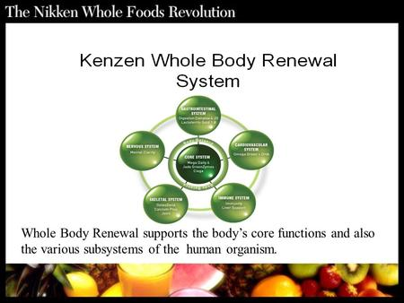 Whole Body Renewal supports the body's core functions and also the various subsystems of the human organism.