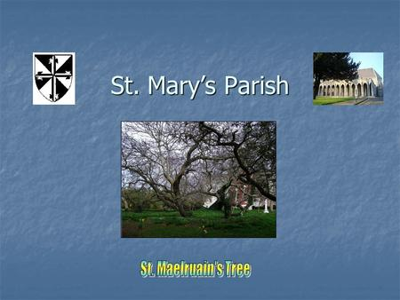 St. Mary's Parish. Tallaght  Phone: 01 4048100