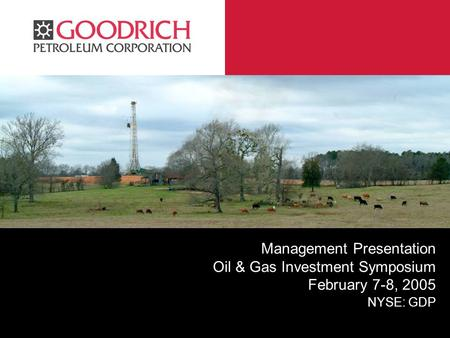 GPC Management Presentation Oil & Gas Investment Symposium February 7-8, 2005 NYSE: GDP.