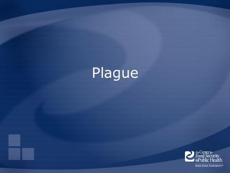Plague. Overview Organism History Epidemiology Transmission Disease in Humans Disease in Animals Prevention and Control Center for Food Security and Public.