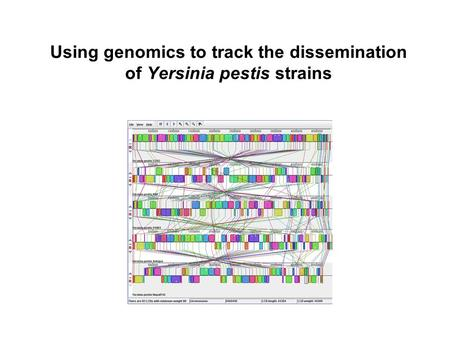 Using genomics to track the dissemination of Yersinia pestis strains