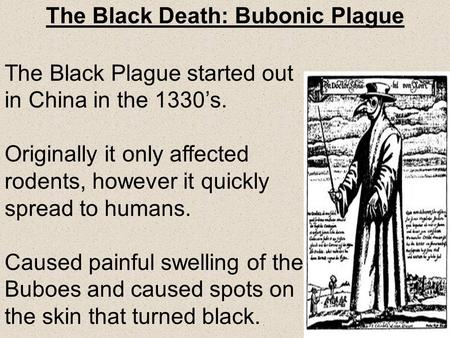 The Black Death: Bubonic Plague
