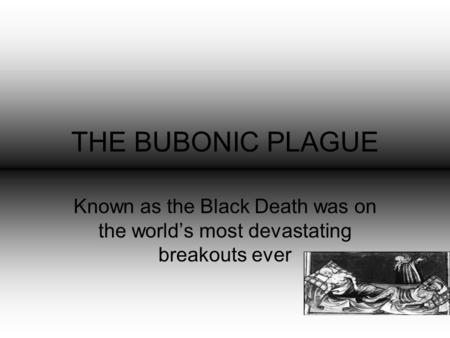 THE BUBONIC PLAGUE Known as the Black Death was on the world's most devastating breakouts ever.