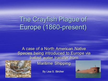 The Crayfish Plague of Europe (1860-present) A case of a North American Native Species being introduced to Europe via ballast water transfer from Maritime.