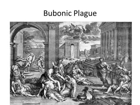 Bubonic Plague. Mid 1300's western Eurasia was hit hard by the bubonic plague Victims would experience chills, fever, convulsions and vomiting Victims.
