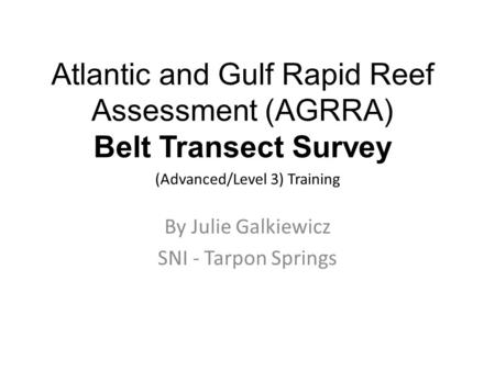 Atlantic and Gulf Rapid Reef Assessment (AGRRA) Belt Transect Survey (Advanced/Level 3) Training By Julie Galkiewicz SNI - Tarpon Springs.
