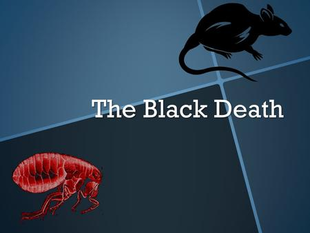 "The Black Death. You must know! 1.What is the ""Black Death""? 2.What caused the Black Death? 3.What were the consequences?"