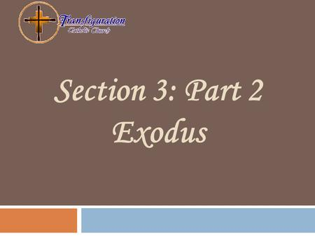 Section 3: Part 2 Exodus. OBJECTIVES: † Describe the role of Moses in the Exodus † Describe the trust that is build between God and His people as they.