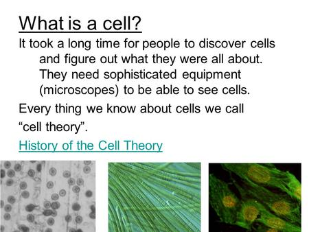 What is a cell? It took a long time for people to discover cells and figure out what they were all about. They need sophisticated equipment (microscopes)