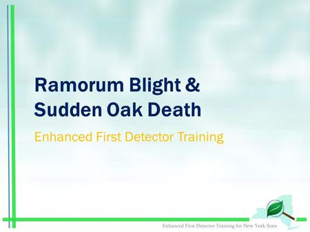 Ramorum Blight & Sudden Oak Death Enhanced First Detector Training.