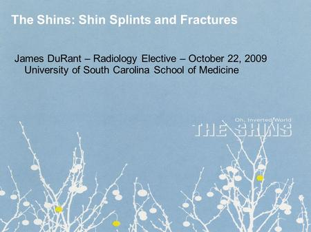 The Shins: Shin Splints and Fractures James DuRant – Radiology Elective – October 22, 2009 University of South Carolina School of Medicine.