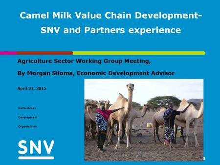 Camel Milk Value Chain Development- SNV and Partners experience