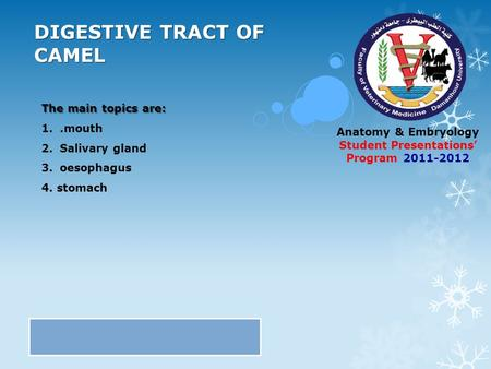 Anatomy & Embryology Student Presentations' Program 2011-2012 DIGESTIVE TRACT OF CAMEL The main topics are: 1..mouth 2.Salivary gland 3.oesophagus 4. stomach.