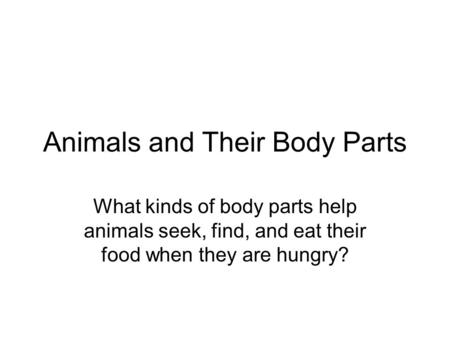 Animals and Their Body Parts