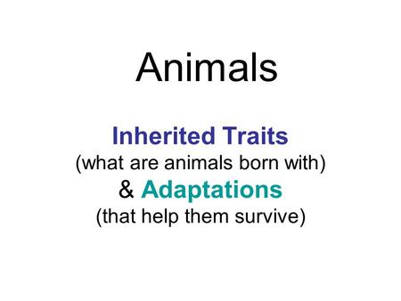 Animals Inherited Traits (what are animals born with) & Adaptations (that help them survive)